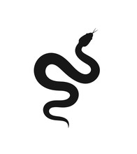 Snake Silhouette. Isolated Sna...