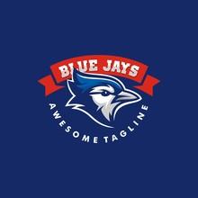 Blue Jay Illustration Vector T...