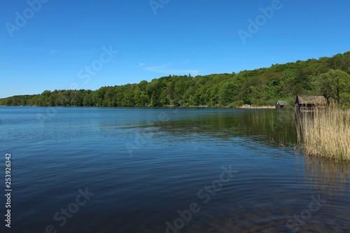 Fotografie, Obraz  Am See im Frühling - Plauer See