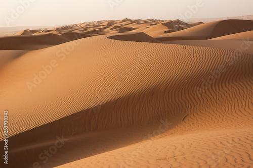 Poster de jardin Desert de sable Dunes of the Wahiba Sand Desert at dawn (Oman)
