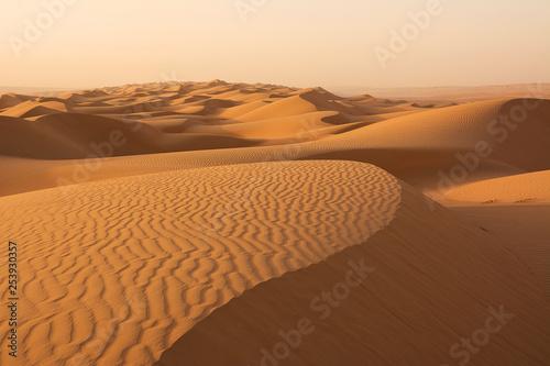 Fotografia  Dunes of the Wahiba Sand Desert at dawn (Oman)