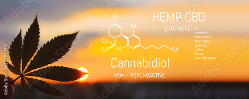 Photo  Hemp CBD oil, Medical marijuana products including cannabis leaf