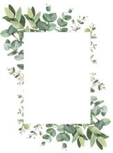 Eucalyptus Rectangle Frame Composition
