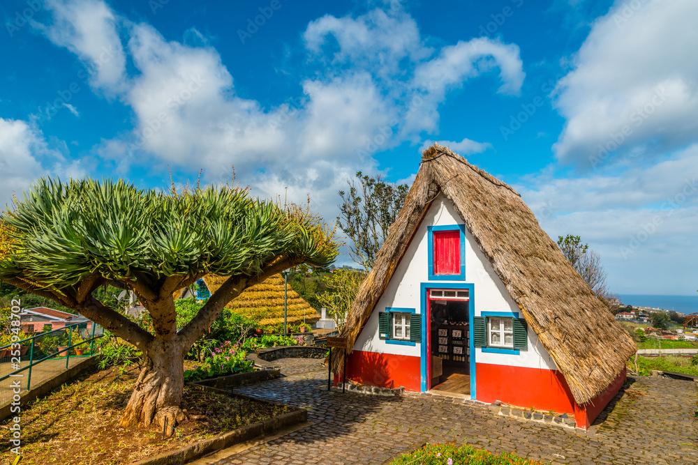 Fototapeta Traditional strawy architecture on Madeira island, Santana, Portugal