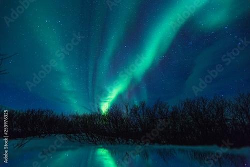 Foto auf Gartenposter Nordlicht Northern lights on the Kola Peninsula