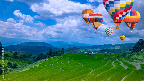 Foto auf AluDibond Grun Colorful hot air balloon fly over green paddy field 7