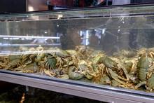 Live Crayfish In The Aquarium ...