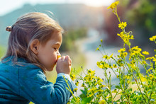 Little Boy Enjoying Flowers Aroma