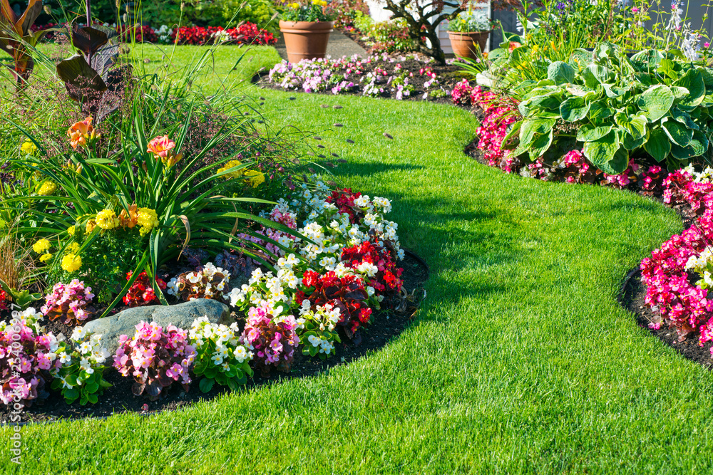 Fototapety, obrazy: Beautiful home garden in full bloom