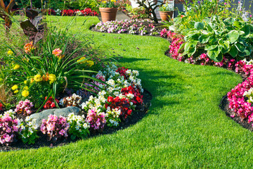 Piękny ogród przydomowy w pełnym rozkwicie