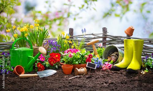 Foto op Plexiglas Europa Planting spring flowers in the garden