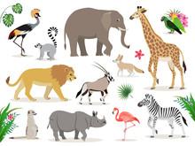 Set Of Cute African Animals Icons Isolated On White Background, Crowned Crane, Lemur, Elephant, Giraffe, Lion, Antelope, Zebra, Suricate, Rhinoceros, Flamingo, Lovebirds, Fennec, Vector