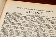 Genesis 1 In The Beginning Fro...