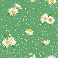 Floral Seamless Pattern With Blossom Daisy Flowers. Fabric Nature Spring Background With Chamomile For Textile, Wallpaper, Wrapping Design. Vector Illustration