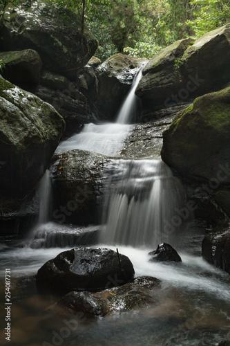 Fotografia, Obraz  Buderim Hidden Waterfall in Buderim, Australia