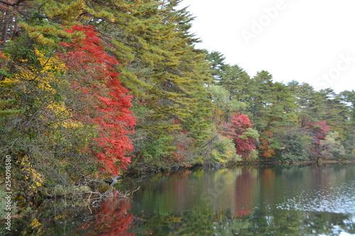 Foto op Canvas Khaki 福島県の五色沼の景観