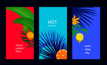 Set Of Minimal Tropical Cards