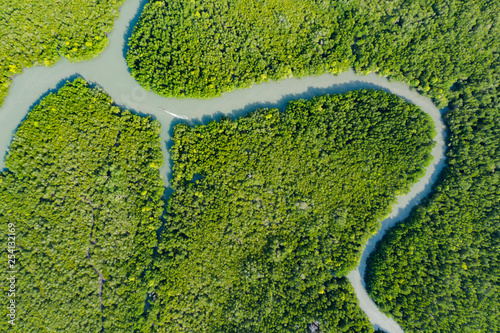 Aluminium Prints Forest river View from above, stunning aerial view of a river flowing through a green tropical forest, it discharges into the Andaman sea. Phang Nga Bay, Phuket, Thailand.