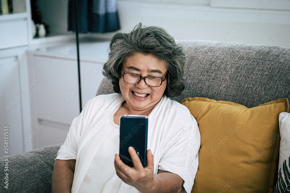 Fototapeta Senior woman Video call with family