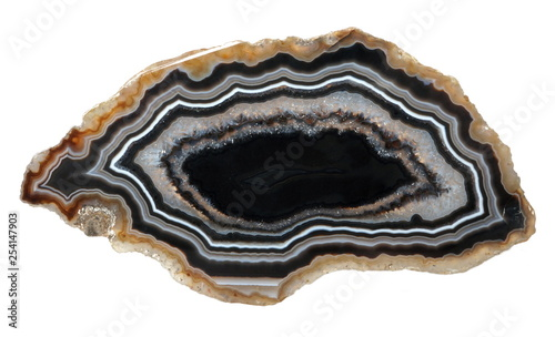 Polished specimen of banded Agate in black and white colors, isolated on a white background Canvas Print