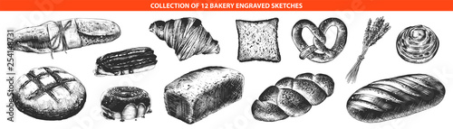 Valokuva Vector engraved style bakery and bread collection for posters, decoration and print, logo