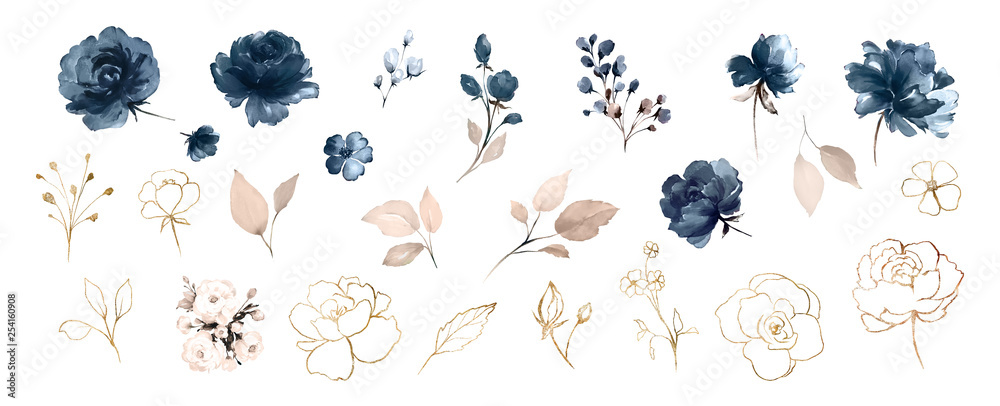 Fototapeta Set watercolor design elements of roses collection garden navy blue flowers, leaves, gold branches, Botanic  illustration isolated on white background.