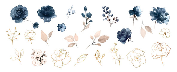Set watercolor design elements of roses collection garden navy blue flowers, leaves, gold branches, Botanic illustration isolated on white background.