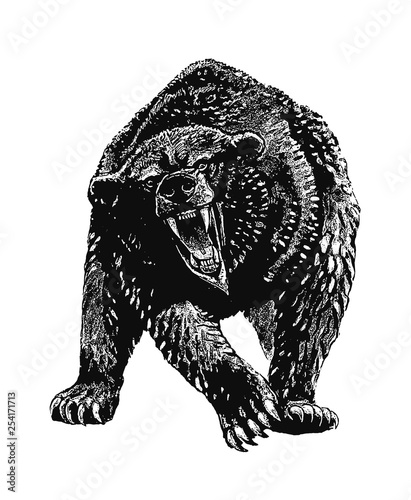 Cave bear illustration. Grizzly bear attack. Tablou Canvas