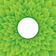 Nature Green Circular Background