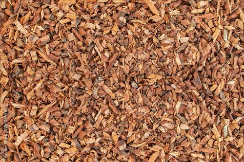 Ground oak bark. The texture of wooden sawdust. Canvas Print