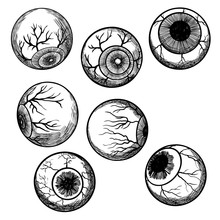 Engraving Hand Drawing Human Eyeball Set. Eye Collection In Different Directions. Vector.