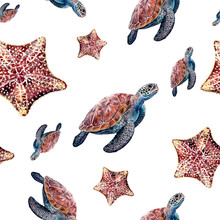 Watercolor Starfish, Sea Turtle Isolated Seamless Pattern.