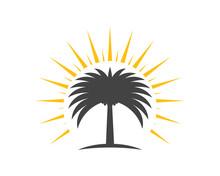 Date Tree Icon Vector Illustra...