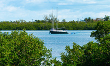 Small Dark Hulled Sailboat Anc...
