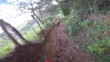 POV of a two riders on a trail in theirs dirt bike, going really fast in a dangerous path in the middle of the nature and florest