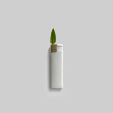 Lighter With Green Leaf Like F...