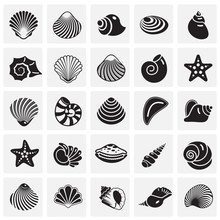 Sea Shell Icons Set On Squres Background For Graphic And Web Design. Simple Vector Sign. Internet Concept Symbol For Website Button Or Mobile App.