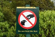 Feeding Prohibition Sign With Inscription Do Not Feed The Kea, Fiordland National Park, Southland, New Zealand, Oceania