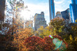 Colorful trees of Central Park in fall with the skyline buildings in the background of Manhattan New York City