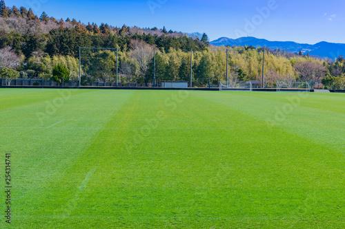 人工芝のサッカーグラウンド Canvas Print