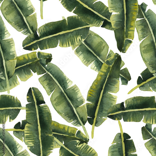 Plissee mit Motiv - Banana palm leaves background. Seamless tropical watercolor pattern (von IMR)