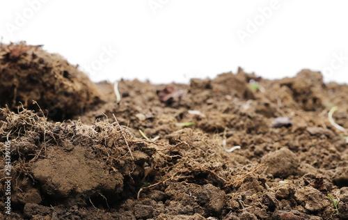 Fotografia, Obraz Dirt chunks, lumps isolated on white background