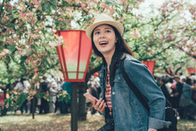Happy Teenage Girl Tourist Wear Hat Hold Smart Phone Stand Outdoor In Sakura Park Spring. Smiling Asian Woman Looking Aside Next To Red Lantern Blooming Pink Cherry On Branches Mint Museum In Osaka.