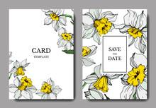 Vector White Narcissus Floral Botanical Flower. Engraved Ink Art. Wedding Background Card Floral Decorative Border..