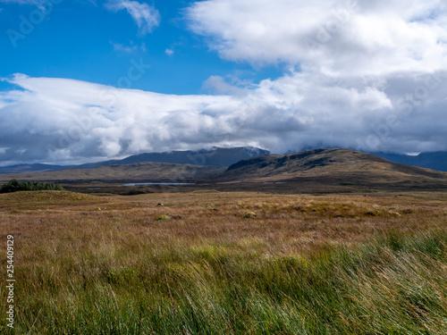 Fényképezés  moor and graslands on a sunny day