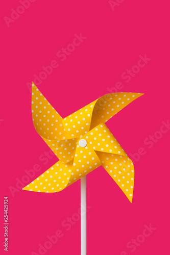 Fototapeta yellow pinwheel on a fuchsia background