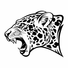 Growling Jaguar Vector Image.