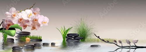 In de dag Orchidee Wandbild mit Orchideen, Gras und Steinen im Wasser