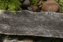 Old Wood Timber Surface With F...