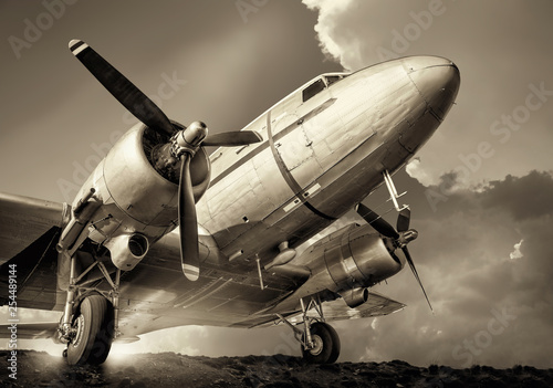 historical aircraft against a cloudy sky Wallpaper Mural